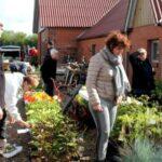 Åskov Haveselskabs forårs palntemarked